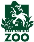Friends of MGA: morning coffee program with the Melbourne Zoo